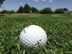 golf-1073465__180