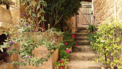 Holidays rental Dordogne - Rental Saint Cyprien